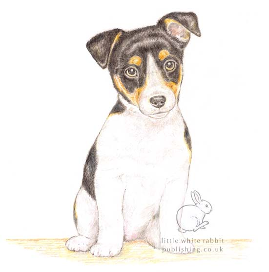 Jack Russell Card Gift